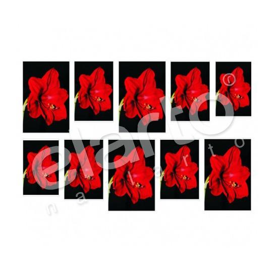 Naklejka na paznokcie - czerwony kwiat