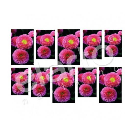 Naklejka na paznokcie - różowe stokrotki
