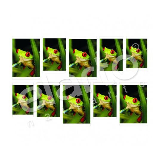 Naklejka na paznokcie - zielona żabka