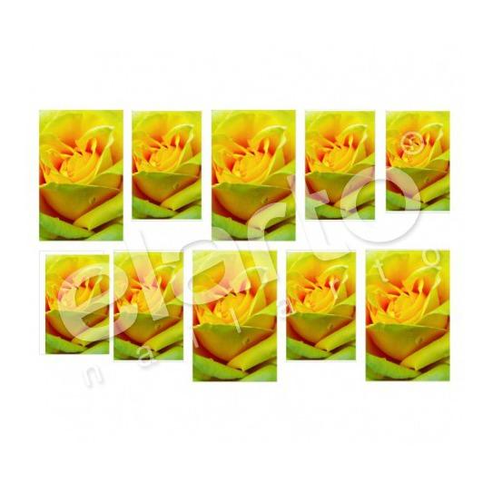 Naklejka na paznokcie - żółta róża