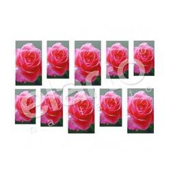 Naklejka na paznokcie - różowa róża