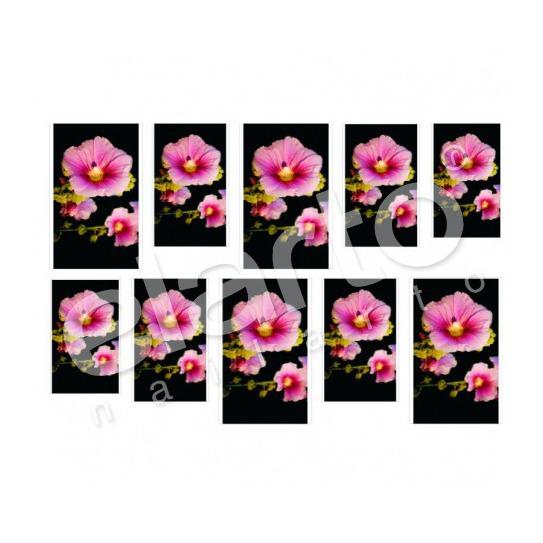 Naklejka na paznokcie - różowa petunia