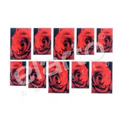 Naklejka na paznokcie - czerwona róża